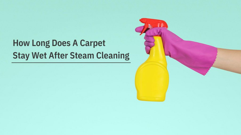 How Long Does A Carpet Stay Wet After Steam Cleaning